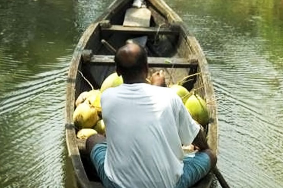 Rediscover Kerala's Backwaters