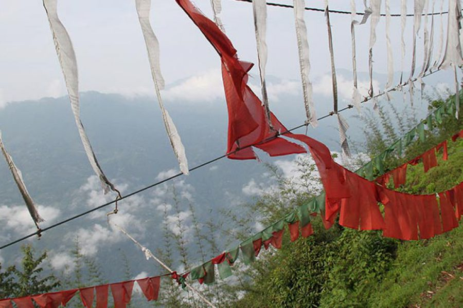 Hoist a Prayer Flag for good luck and happiness