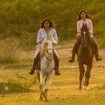 Wild Gujarat: Horse riding in the Little Rann of Kutch