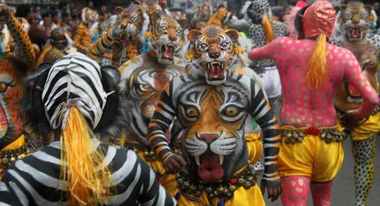 Cheer for your neighbourhood Tigers